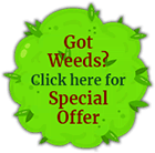Got Weeds? Click here for Special Offer